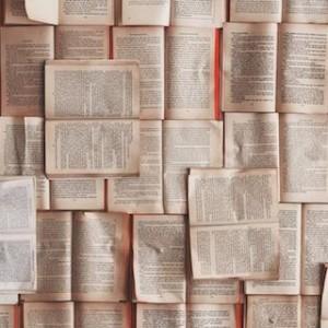 【インタビュー】秋草俊一郎「〈文学〉は情報化を欲望する――デジタル・ヒューマニティーズの可能性」