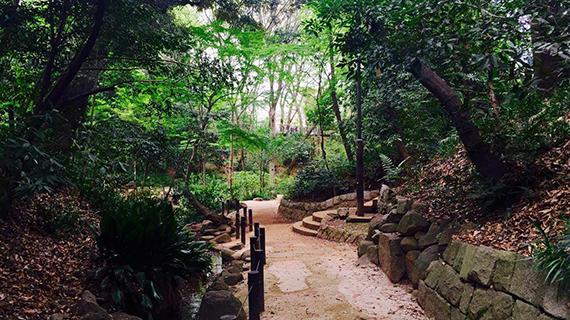 ☆新企画☆「東京5キロメートルーー知ってる街の知らない魅力」第1回 目白ーー高級住宅街で見つけた自然と癒しスポット【毎月配信】